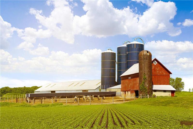 粮价持续低迷,专家竟然说是我国农业必经之路,你觉着靠谱吗?