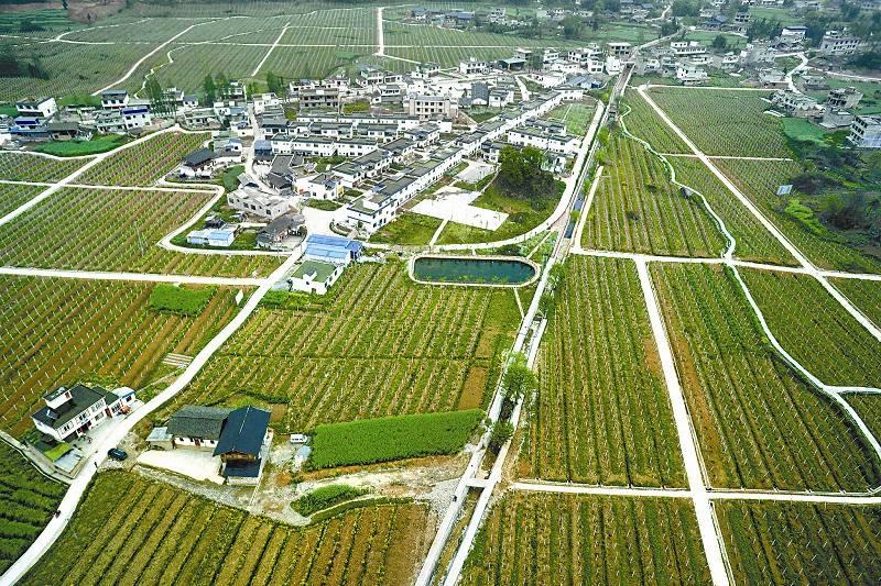 盘点未来30年,我国农业将迎来哪七大转折点?