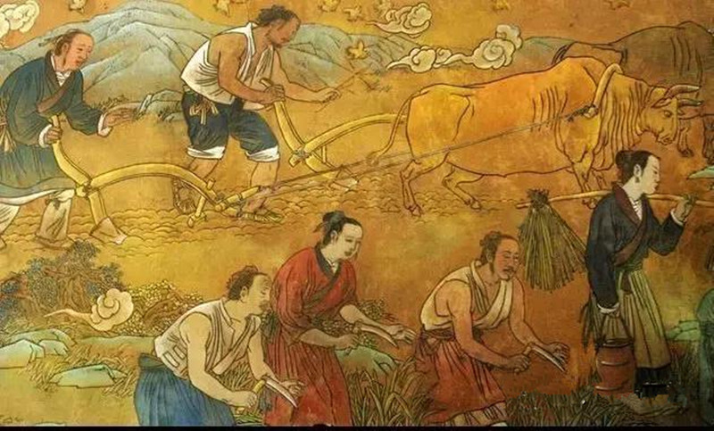 未来30年,是我国农业大崛起时代!