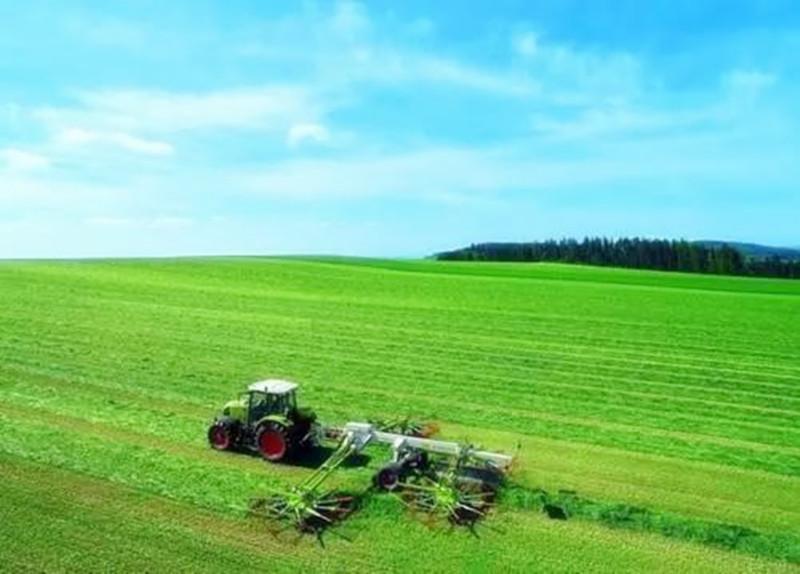 创业小黑板 农业的新革命:粮改饲