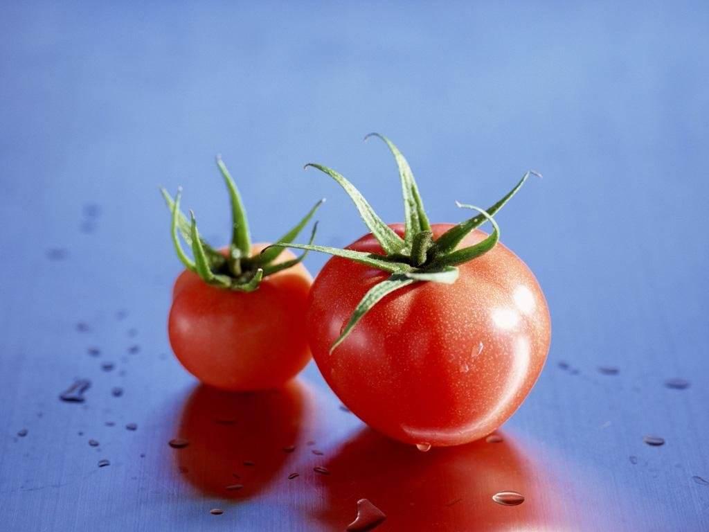 案例|如何把一个西红柿做成行业标杆