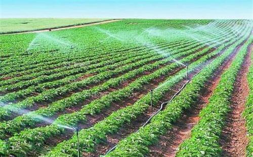创业小黑板|啥叫节水农业、灌溉农业、旱地农业