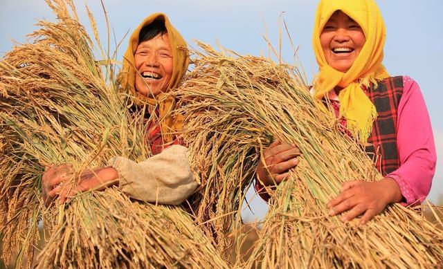"""警惕!2018农民将面临4大""""殇"""",但跨过去就迎来春天!"""