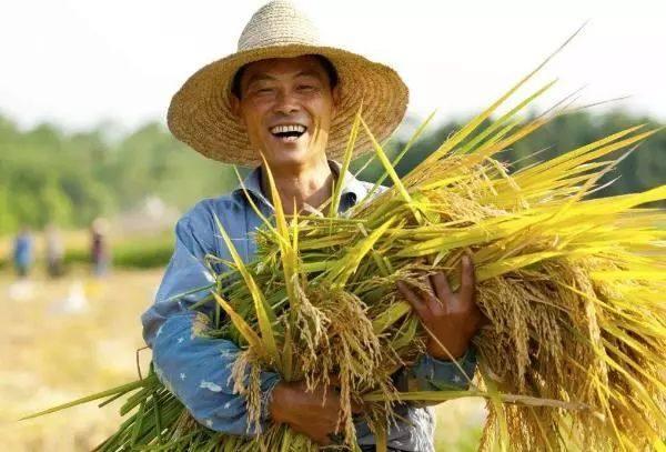 国家明确定调!2018大农业要搞好这6件大事