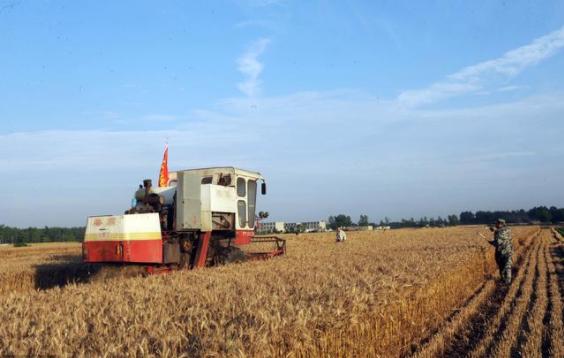 大前景|火了!火了!火了!国家明确支持农业产业化联合体