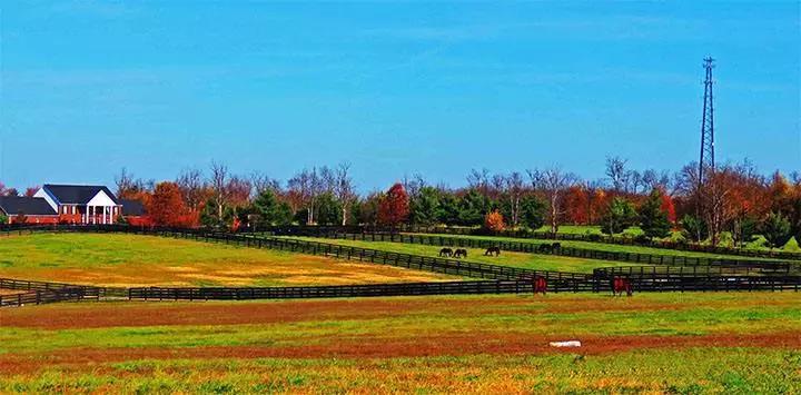 知识篇|高效农业的六大模式