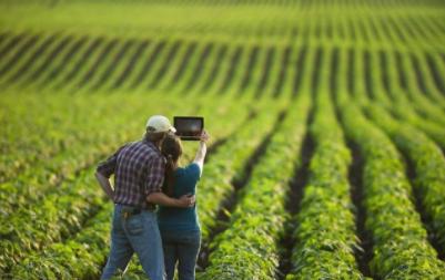 传统农业VS新农业,仅凭一点新农业完胜!