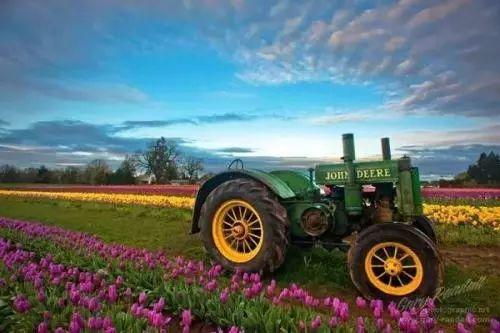 世界农业的6大新模式!