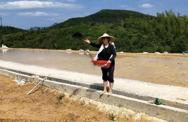 她放弃百万年薪,租了400亩地,准备做高端农产品!