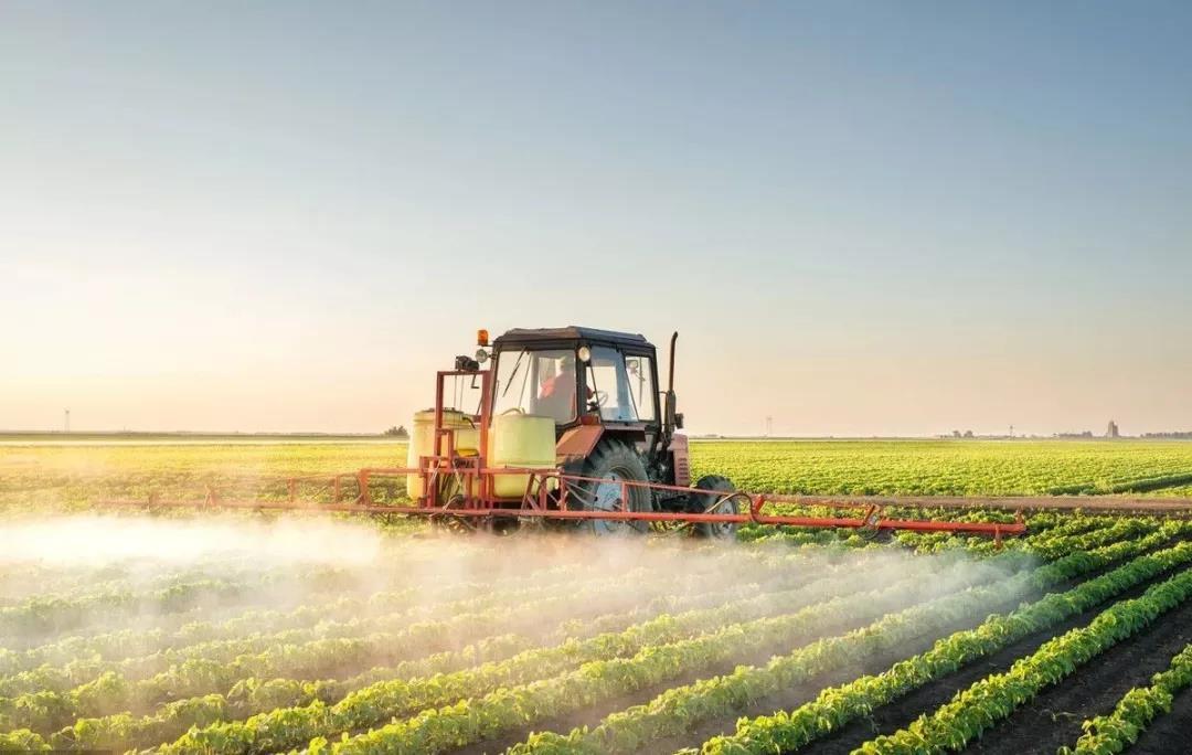 独家专访|博伟投资合伙人李金河:中国农业最大的问题根源是小散
