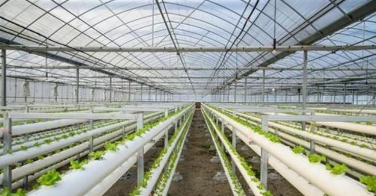 农业产业园如何创建?附规划要点解析