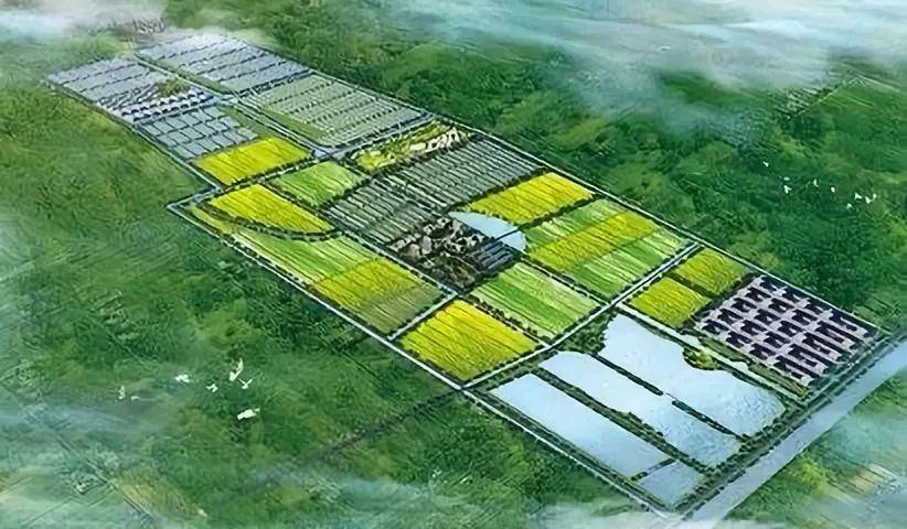 政策通知|第九批国家农业科技园区申报开始,需符合5个条件!