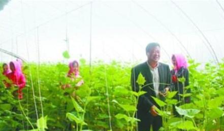 农业发展是最有前景的投资战略、农业需要如何才能利益最大化是根