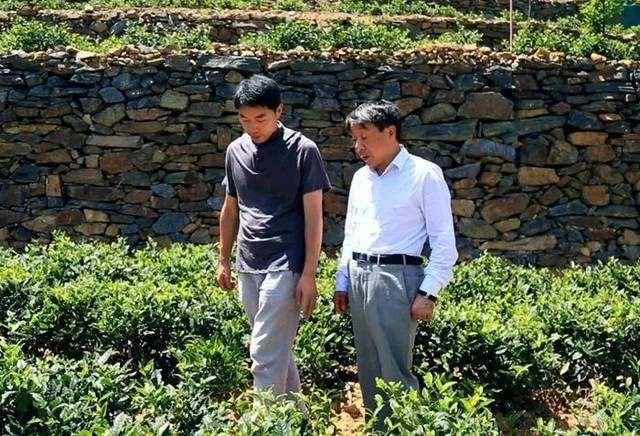"""投资百万又把庄家砍掉,他被村民称之为""""不会搞农业"""""""