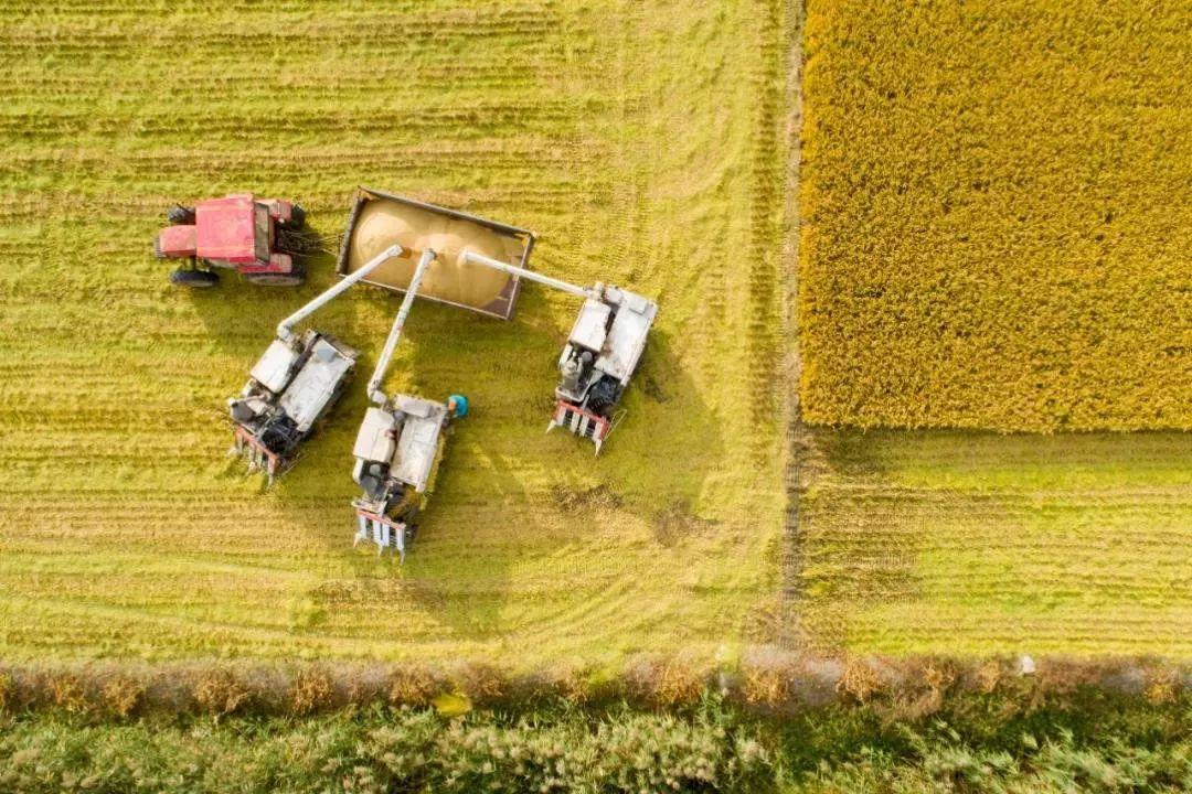 政策解读|国务院新闻办解读,下一步高标准农田建设怎么干?