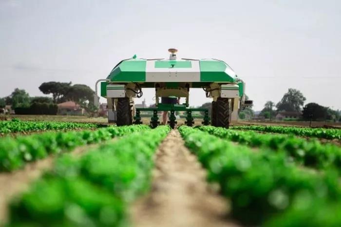 三农日报| 国家严查转基因非法制种和进口;区块链农业核心业务模式:区块链+