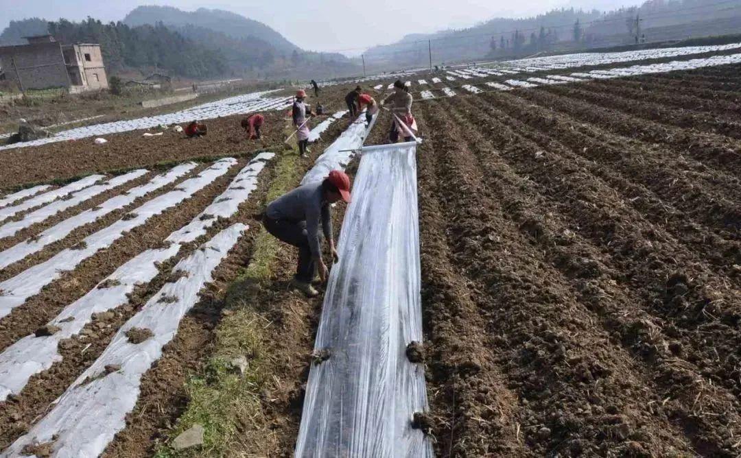"""【懂行】生态农业中的3个""""道"""""""