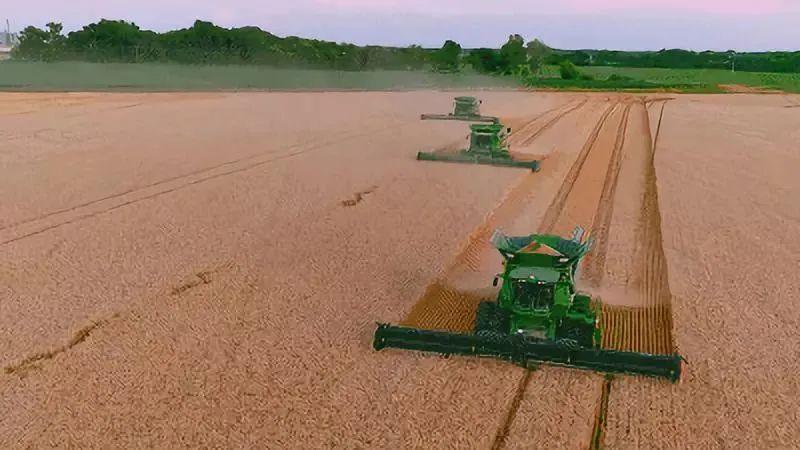 """为什么摒弃""""美国模式"""" ,中国农业方能重返巅峰?"""