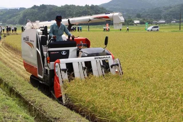 【海外农业】日本农业:为什么走在世界农业的前沿?