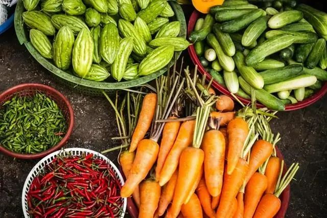 【循环农业】创新农业生产模式,生态循环绘就农业新蓝图