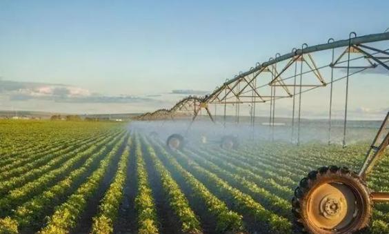 【海外农业】中国2.2亿农民干不过荷兰22万农民?