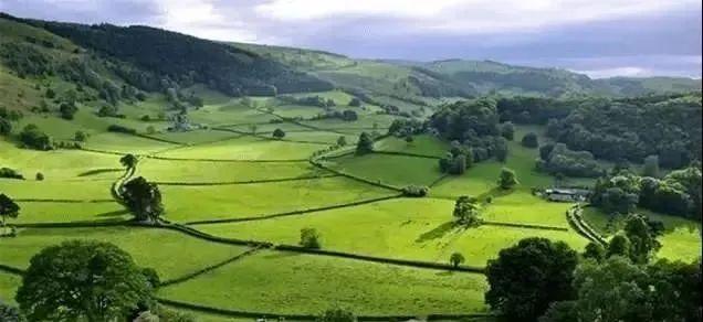 【模式研究】生态循环农业的三大模式及运营案例