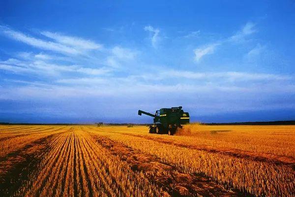【深度剖析】中国农业高度分散,组织化水平低,怎么办?