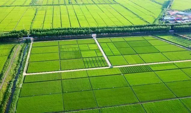 """【专家解读】高标准农田""""高""""在哪里?农业农村部详解"""