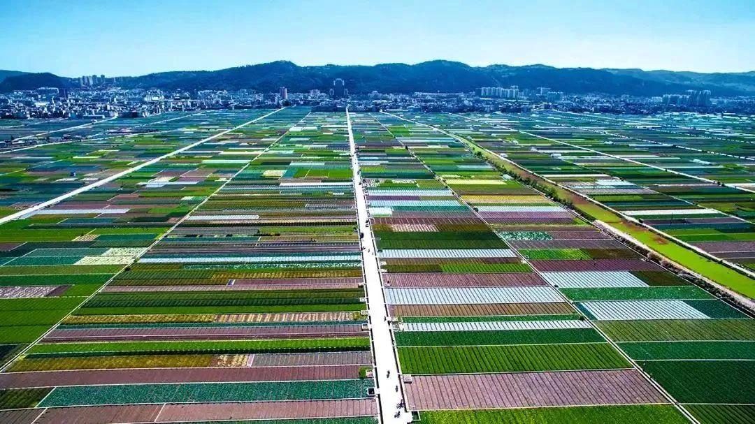【农业补贴汇总】23类农业项目可申请补贴,数额超千亿!(附申报金额及部门)