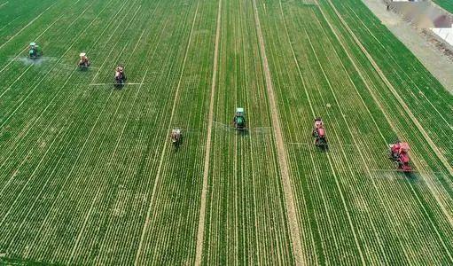 【图解】关于设施农业用地的几点冷思考