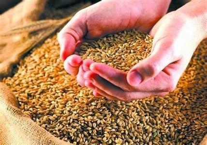 农业供给侧结构性改革 粮食价改2017年将继续推进