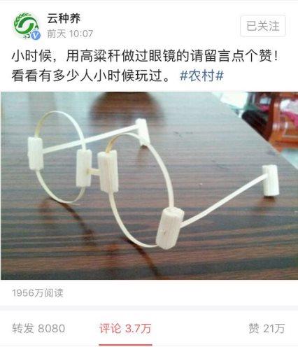 """农业创新!云种养""""高粱眼镜""""被刷屏"""