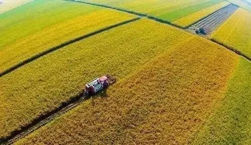 【报告分析】唐仁健等:英国和波兰农业合作社发展考察报告