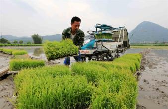习大大如此看好农民合作社,那么发展农民合作社到底有啥意义呢?