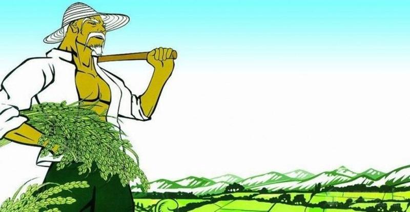三农日报|2017农业补贴重点支持12个方向已定;农资迎来发展新高潮