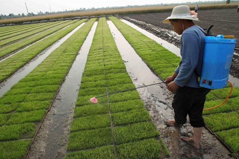 三农动态:农村肥料转有机肥料将有10亿新补贴,你知道吗