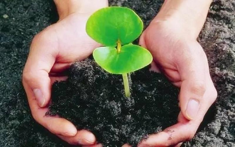 我国土壤肥料学急需正本清源,刻不容缓!