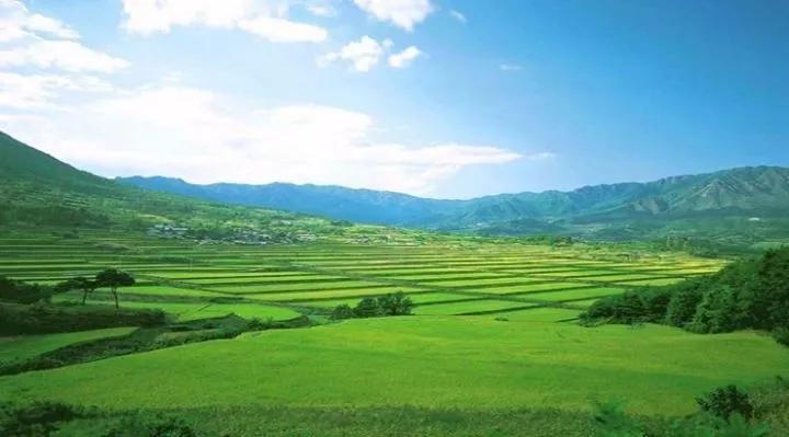 农业人注意了,中国农业即将颠覆!
