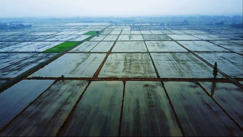 农分期完成数亿元 C 轮融资,执一资本领投