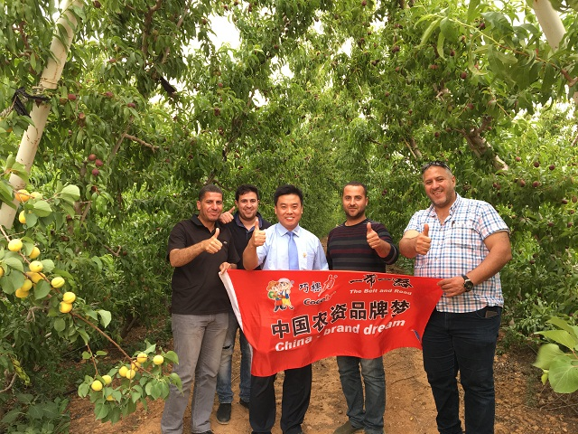 中国农资品牌梦|巧棵力服务约旦,助力农户增产增收!