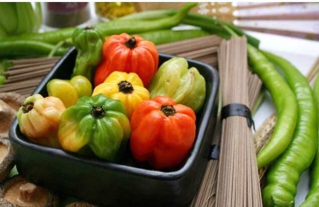 农业产业周报|有机肥替代化肥补贴方案出炉;资本看好农服领域