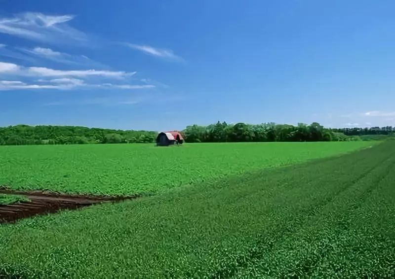 三农日报|仓配模式是未来物流发展主流模式;我国自热食品规模超30亿