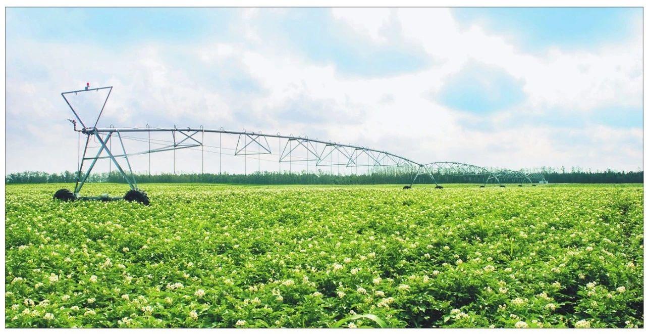大深度|我国农业的十大趋势和挑战与新时代农牧企业的精准定位