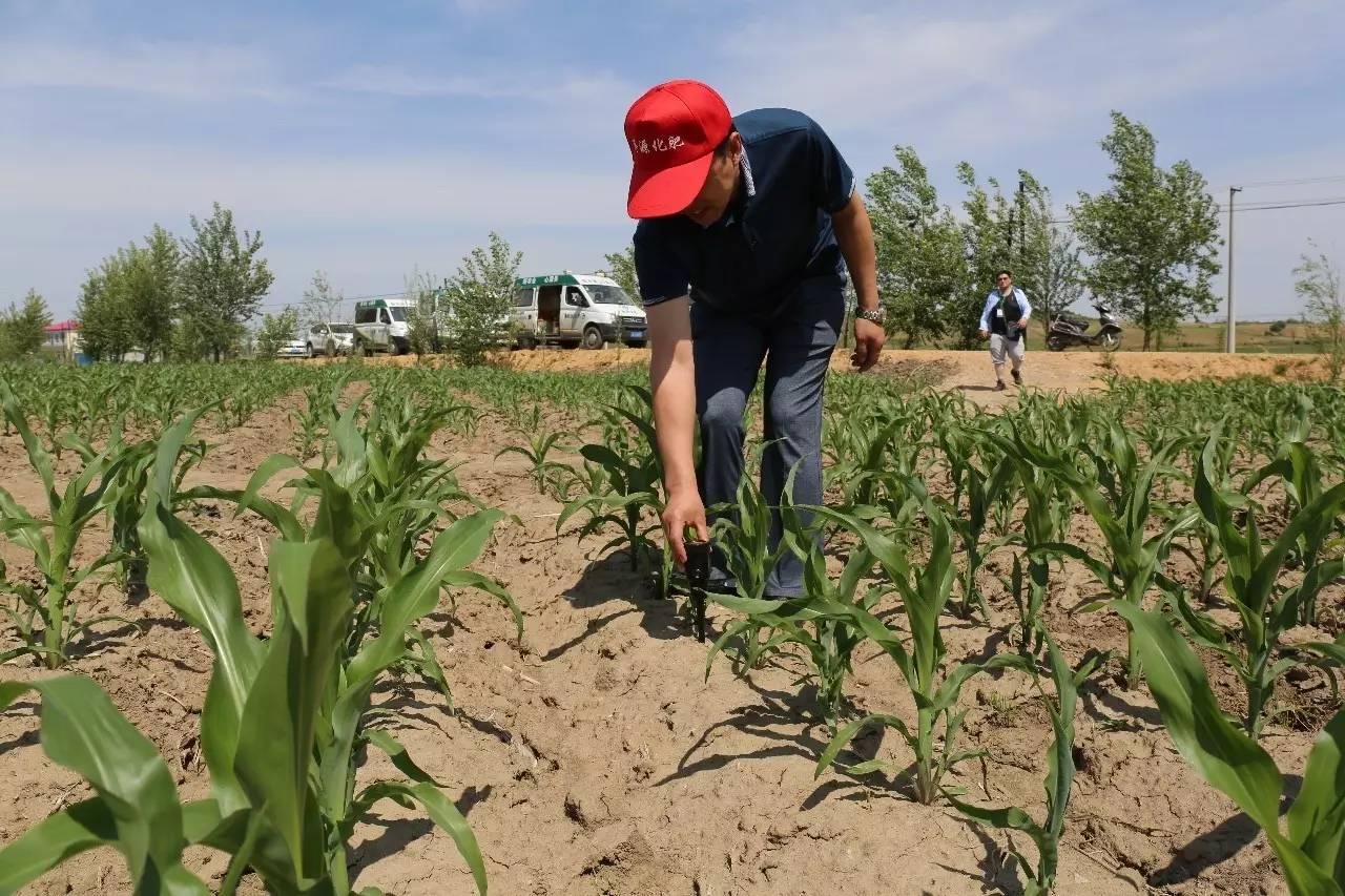2019年肥料行业变化十大预测