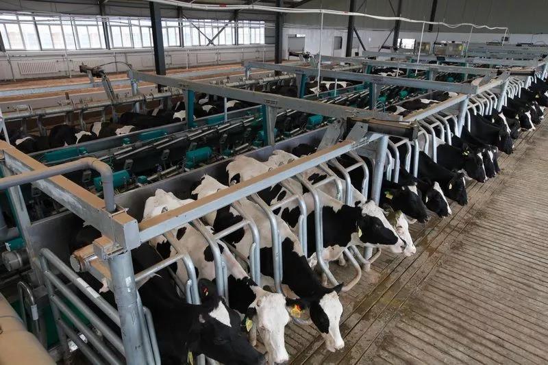 三农日报 中国化肥行业面临四大挑战;中粮集团的大动作;什么是富碳农业