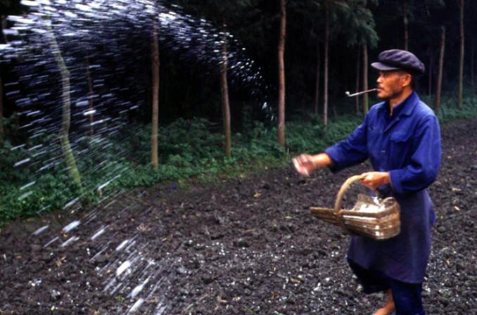 2019年中国化肥行业市场分析:环保政策高压导致市场销量下降 却利好有机化肥发展