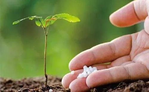 2020年,农资行业注定不平凡:提高核心竞争力是唯一出路