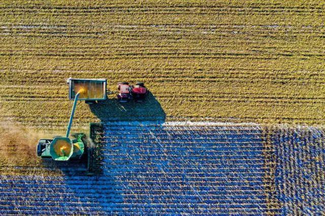 深度|政策利好,农资企业纷纷发力数字农业,背后的原因又是什么