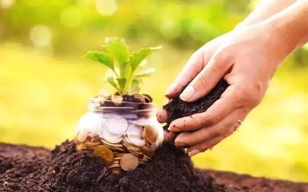 【行业分析】农资行业或迎来最大的变局