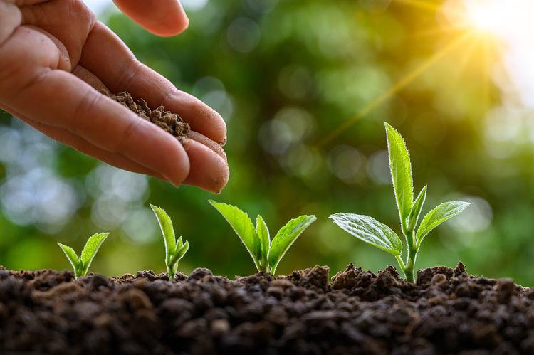 有机肥产业即将大爆发,未来必将呈现这3大趋势